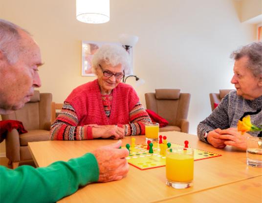 Gemeinschaftsspiele in der Tagespflege Frankfurt (Oder)
